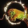 Цирки в Уве